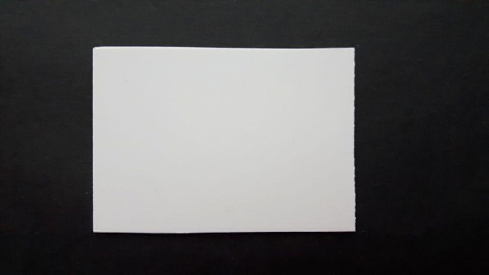 cartonase (5 buc) martisor model 12